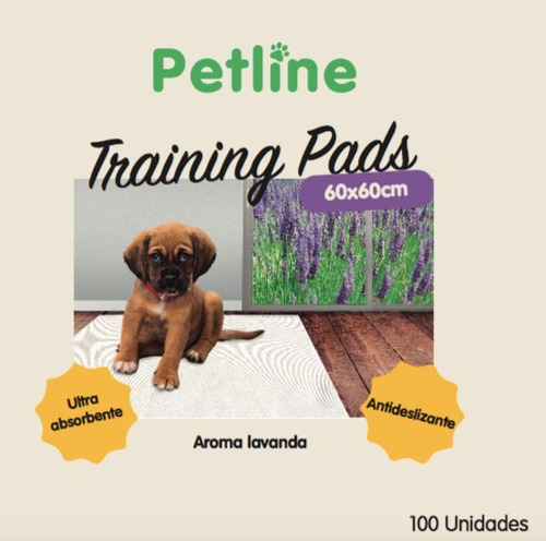 100 sabanillas pañales de entrenamiento mascotas