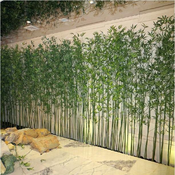 100 sementes de bambuzinho de jardim com garantia r 11 99 em mercado livre - Bambu planta exterior ...