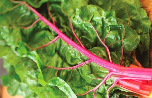 100 semillas de acelga penca rosada organicas