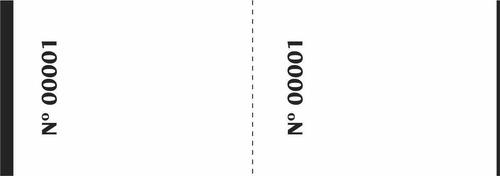 100 talões de controle 2 corpos numerado c/ 100 folhas cada