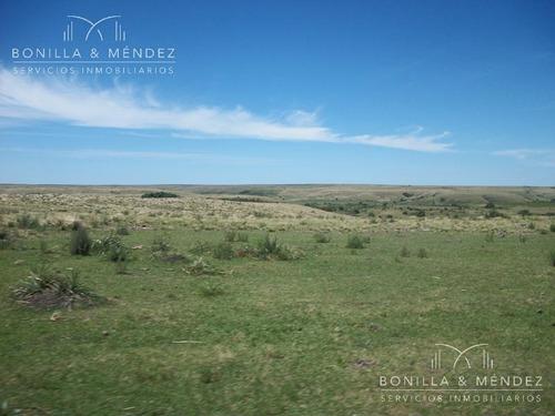1000 hectáreas en salto
