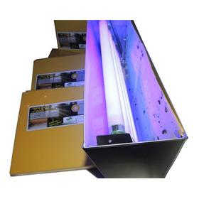 1000 Refil Adesivo Mata Moscas Armadilha Luminosa 39x10 Cm