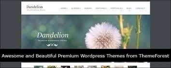 1000 templates wordpress sites script themeforest download