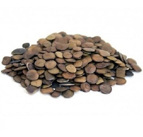10.000 sementes sansão do campo para muda de cerca viva