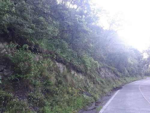 10,000m2 de terreno en real del monte