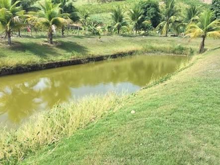 1000m2 perfeitos de terreno por r$ 45,000 026