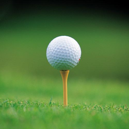 100pzs golf tee de madera 83mm con fricción cero