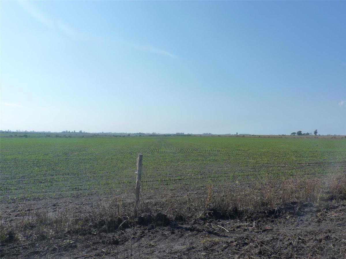 107 has. agrícolas  gral. campos  concordia