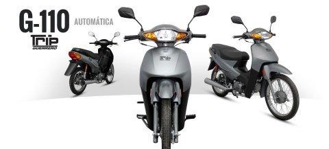 110 blitz motos