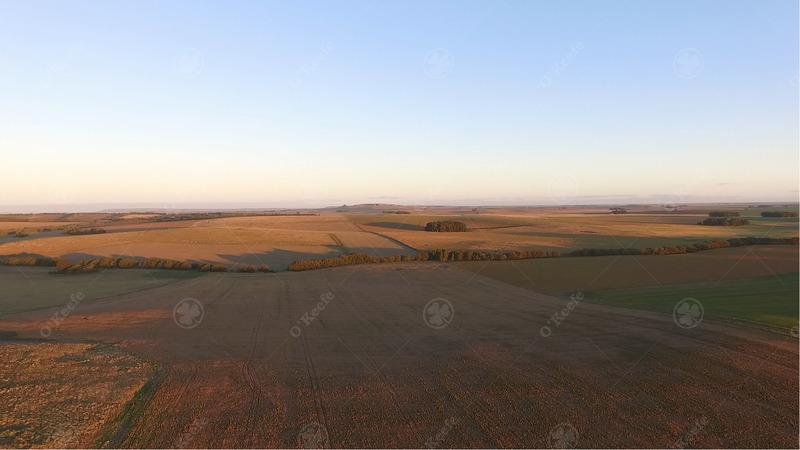 110 has - campo 70 % agrícola -  a 100km del puerto de necochea
