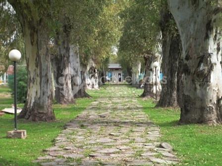 1156-último lote en barrio agustinas i