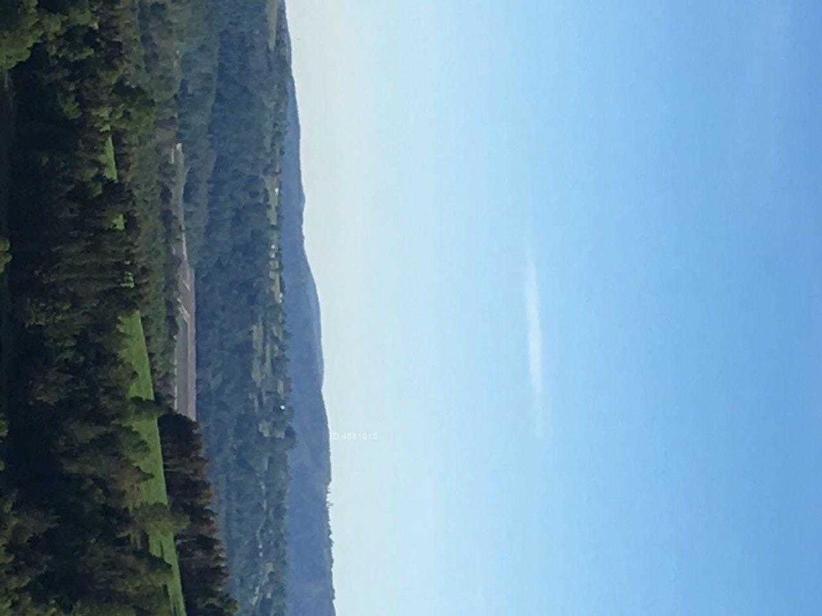 12 km de panguipulli a los tallos