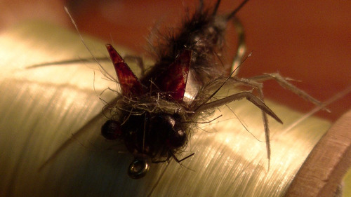 12 ninfas de selección para el fly