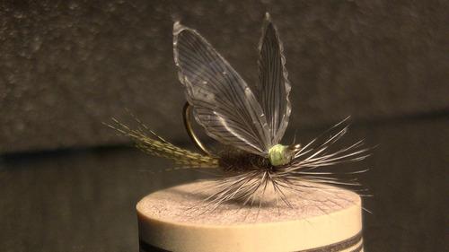 12 secas de selección para el fly