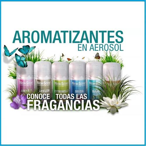 12 x aerosol fragancia repuesto newscent aromatizador