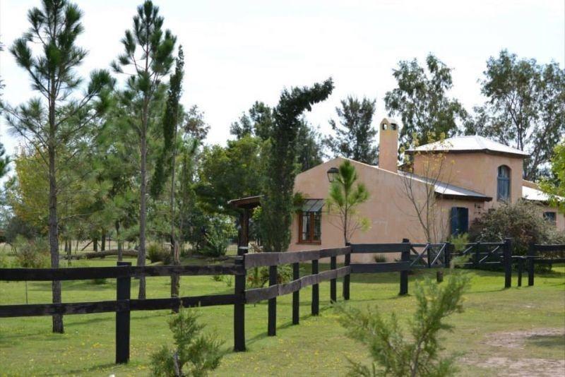12.60 hectáreas | campo | san antonio de areco