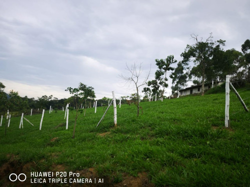 127b:  terreno com acesso rodovia dom pedro