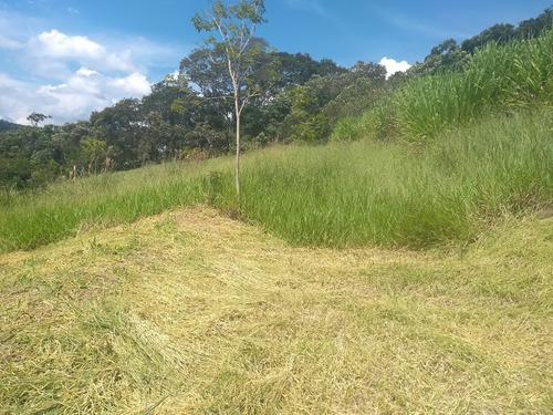 12b últimos terrenos demarcados