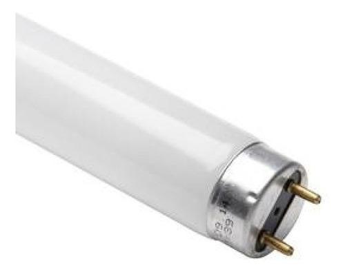 12pçs lâmpada uv 15w bl mata inseto mosquito pernilongo 100%