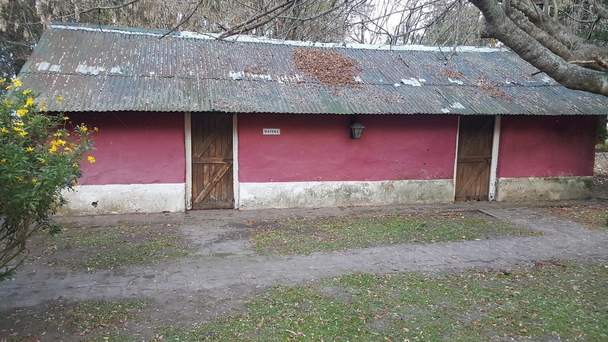 130 has - campo en venta en chascomus - ideal cria de caballos