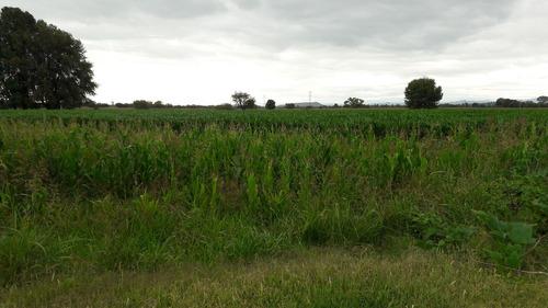 135 hectareas planas con pozo pedro escobedo qro.
