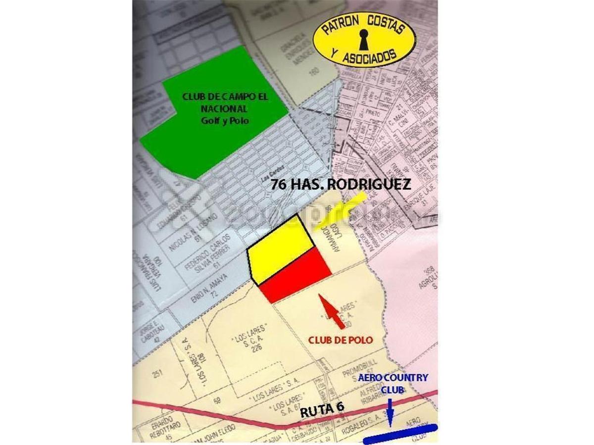 1399-a--76 ha general rodriguez para cría polo r. 6 -