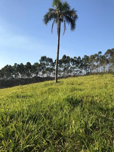 15 vendo maravilhoso terreno de 600 m2 barato