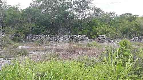 150 has. en carretera hunucma - sisal, precio de 37 pesos por m2. ideal como inversión para lotes
