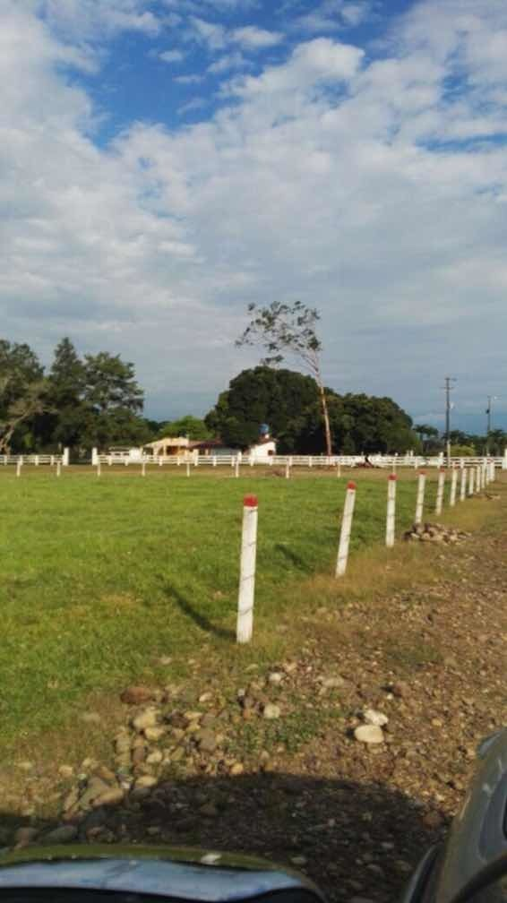 160 ha en cumaral a 45 kms de villavicencio
