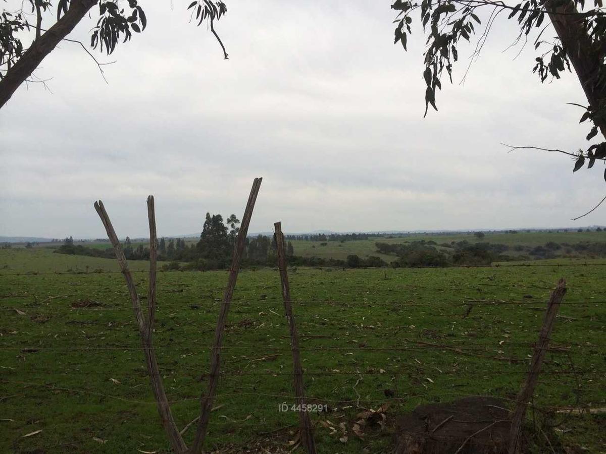 16243 / terreno / camino a santo domingo