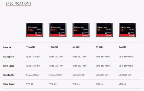 16gb memoria compactflash