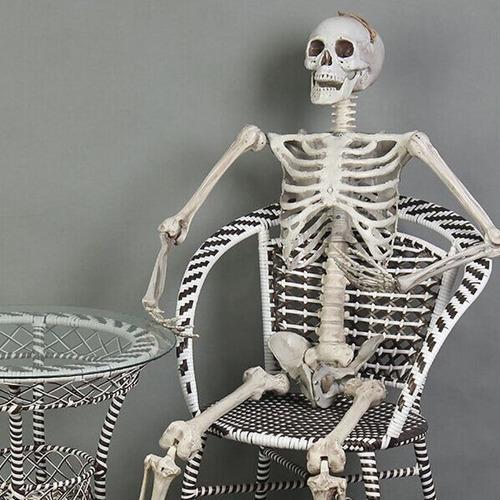 170 cm de tamaño humano cráneo humano esqueleto casa atormen