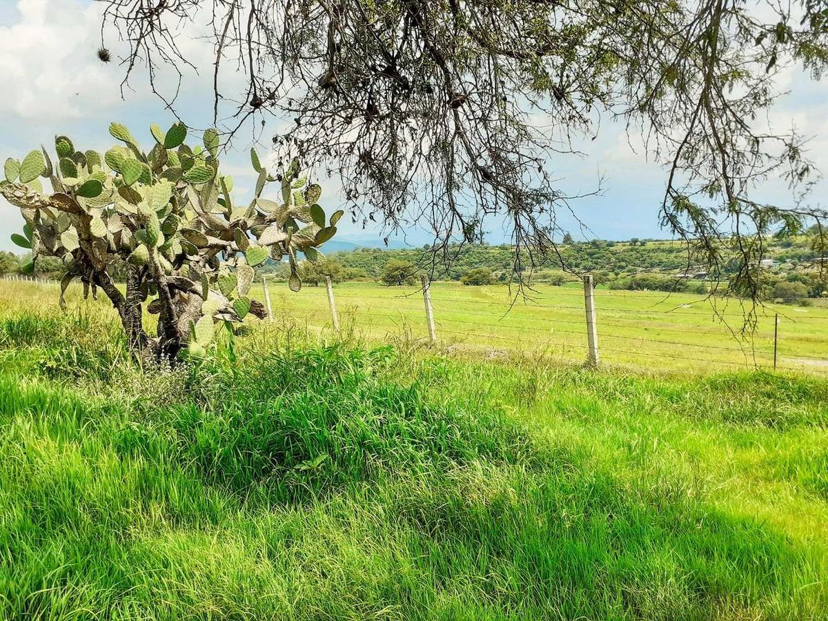 18 hectareas de riego frente a san ramon, acambaro