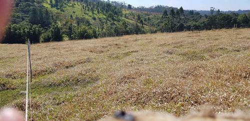 18c terreno com demarcação