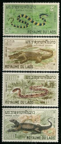 1967 laos: reptiles