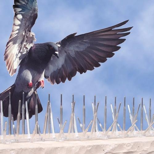 1m pinches pinchos negro posado palomas proteccion medianera
