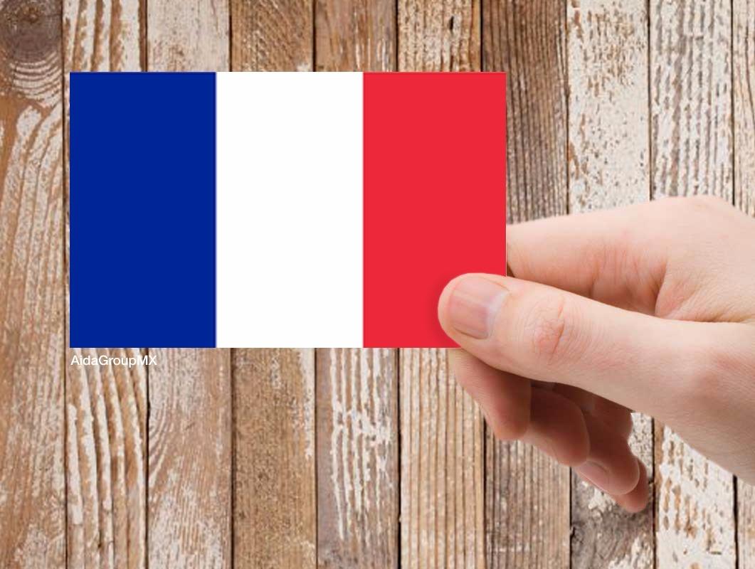 2 Calcomanías Sticker Bandera De Francia (9cm X 6 Cm) - $ 169.00 en ...