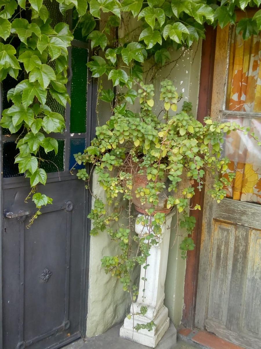 2 casas s/ lote 9.30 x 34 calle 36 e. 1 y 2 barrio norte