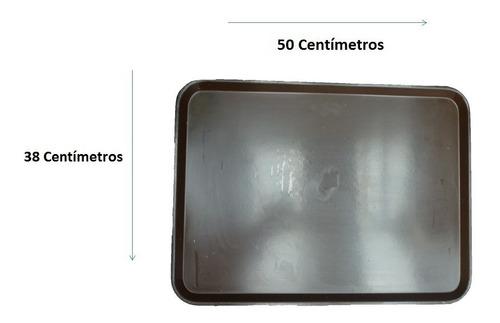 2 charolas meseros restaurante fibra de vidrio incluye envío