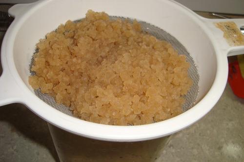 2 colher kefir de agua - frete gratis + manual cultivo