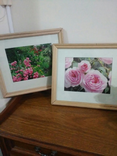 2 cuadros de flores