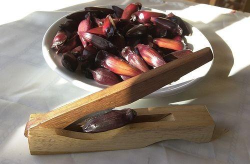 2 descascadores de pinhão em madeira com faca no centro