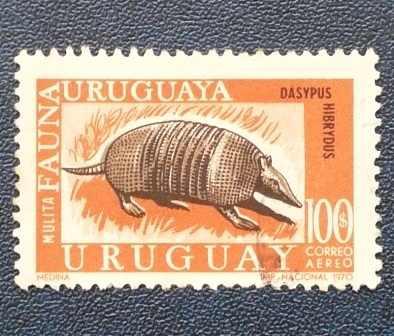 2 estampilla fauna 1970 uruguay 100$ mulita 150$ puma animal