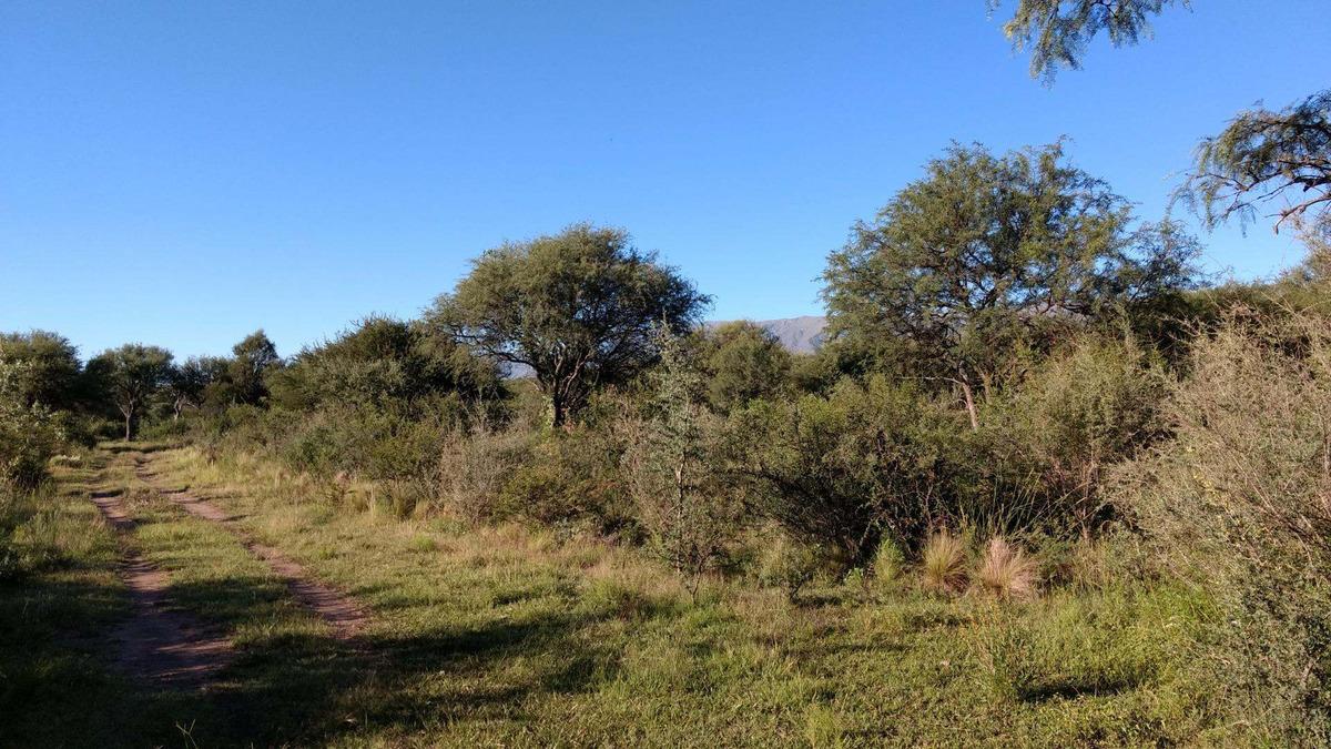 2  hectáreas en carpintería san luis