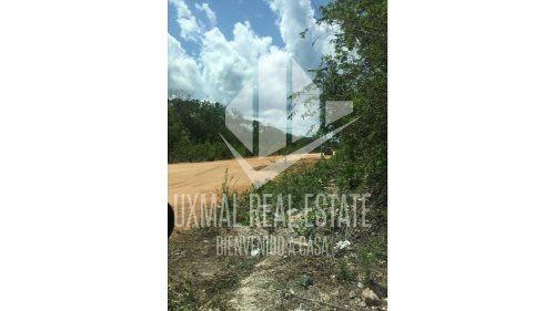 2 hectáreas para fracc. cerca las cols. cristal y yaaxlum tulum q.roo.