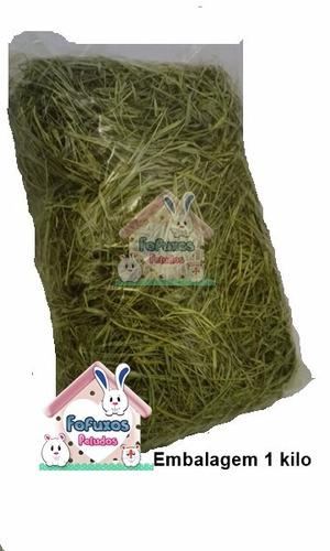 2 kg de feno coast cross premium p/porquinhos coelhos e chin