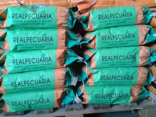 2 kg de sementes de grama batatais (rende 200 a 300 m2)