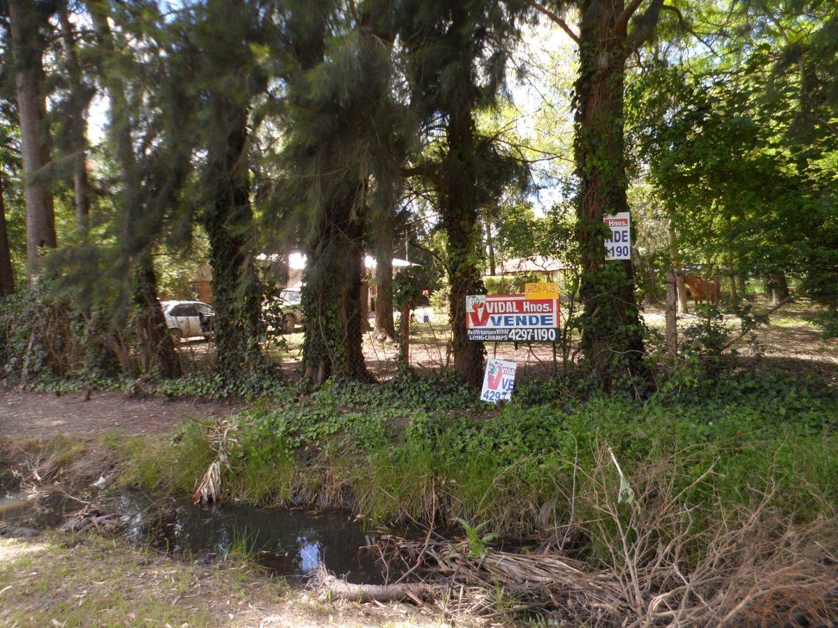2  lotes forestados facilidades / financiación vh30