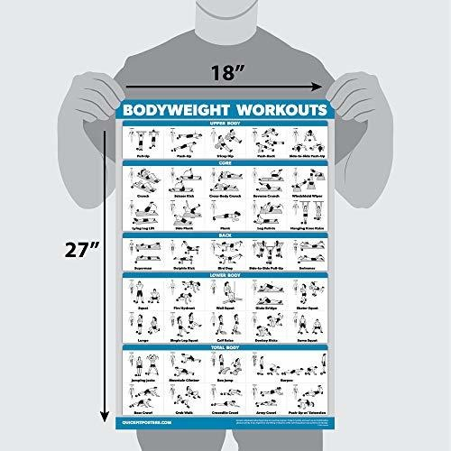 Vol 1 /& 2 Volume 1 /& 2 QuickFit 2 Pack Dumbbell Workout Exercise Posters 18 x 27 Free Weight Body Building Exercise Charts