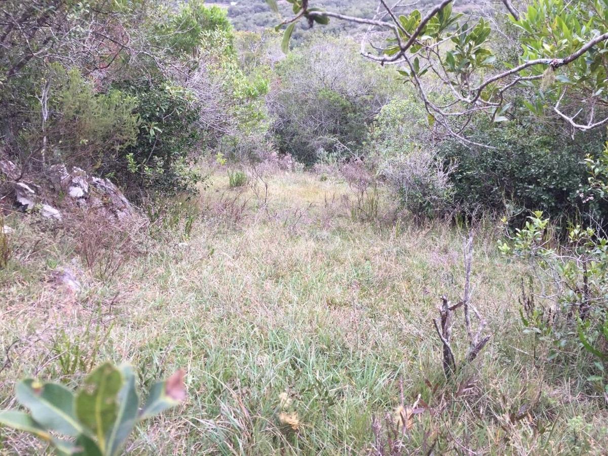 2 terrenos a las venta en romerillos hermosa vista potencial
